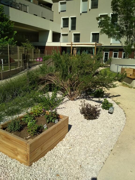 chantier jardin thérapeutique Montpellier - o jardins